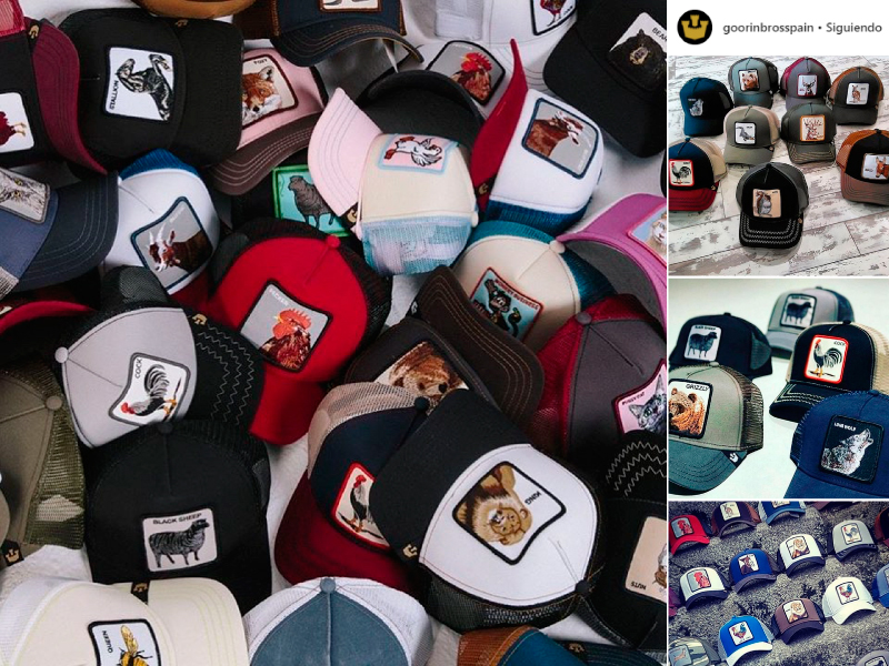 Gorras Goorin Bros  las gorras con animales que todo el mundo lleva ... 50b0494e000